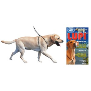 (Lupi) Dog Harness (Large)