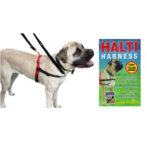 (HALTI)  Dog Harness  (Large) + Free Training Guide
