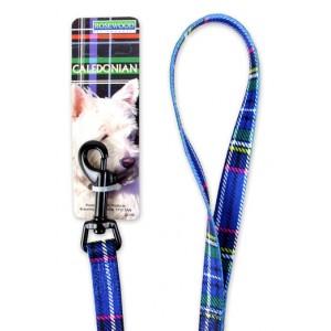 (Rosewood) Caledonian Dog Lead 40 inch x 5/8 inch (Blue)
