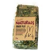 (Boredom Breakers) NATURALS Ginkgo Plus (75g)