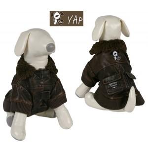 (YAP Dog) Flying Jacket Dog Coat Acorn  10inch